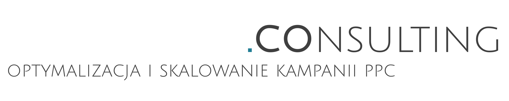 czajkowski.consulting logo