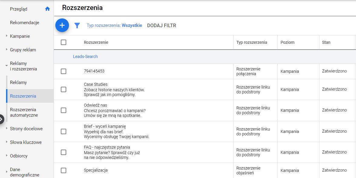 Fragment raportu Google Ads - Rozszerzenia